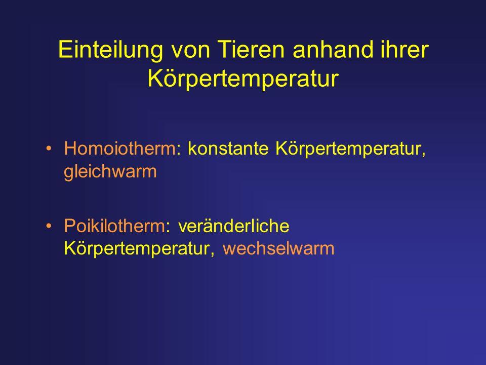 Einteilung von Tieren anhand ihrer Körpertemperatur Homoiotherm: konstante Körpertemperatur, gleichwarm Poikilotherm: veränderliche Körpertemperatur,