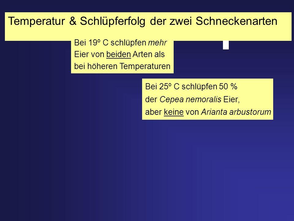 Temperatur & Schlüpferfolg der zwei Schneckenarten Bei 25º C schlüpfen 50 % der Cepea nemoralis Eier, aber keine von Arianta arbustorum Bei 19º C schl