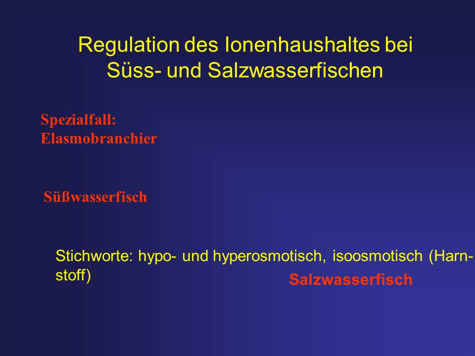 Süßwasserfisch Salzwasserfisch Spezialfall: Elasmobranchier Regulation des Ionenhaushaltes bei Süss- und Salzwasserfischen Stichworte: hypo- und hyper