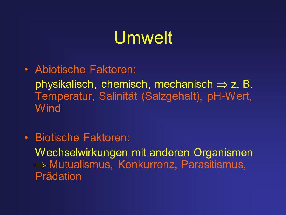 Umwelt Abiotische Faktoren: physikalisch, chemisch, mechanisch z. B. Temperatur, Salinität (Salzgehalt), pH-Wert, Wind Biotische Faktoren: Wechselwirk