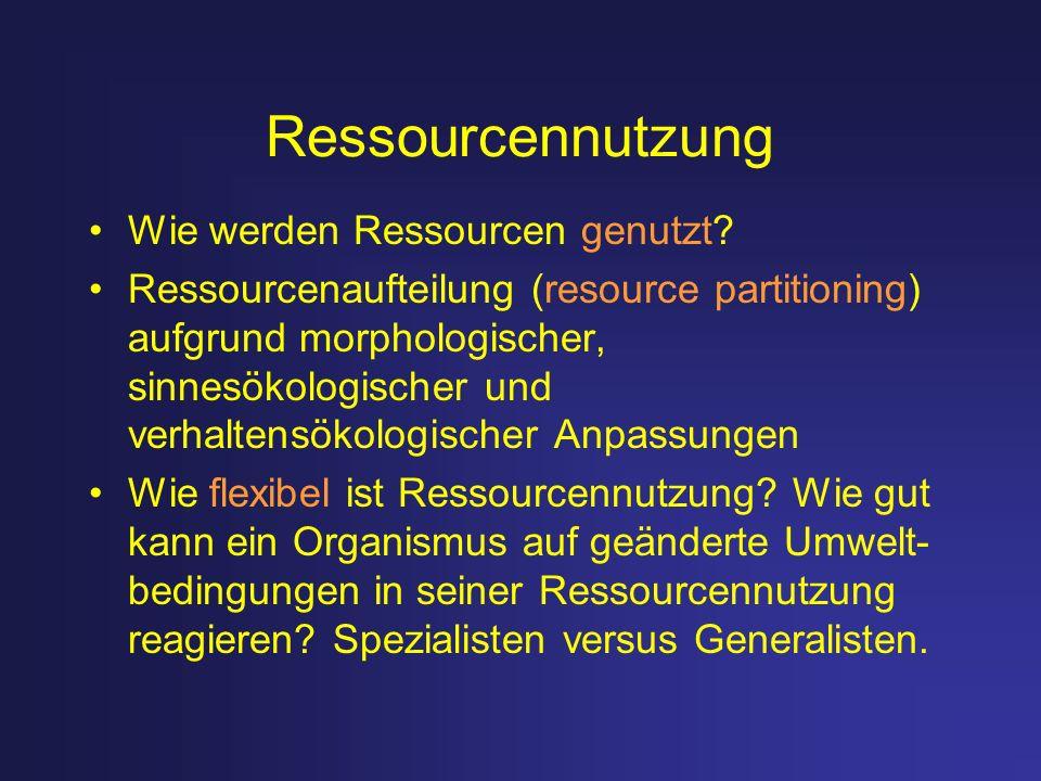 Ressourcennutzung Wie werden Ressourcen genutzt? Ressourcenaufteilung (resource partitioning) aufgrund morphologischer, sinnesökologischer und verhalt
