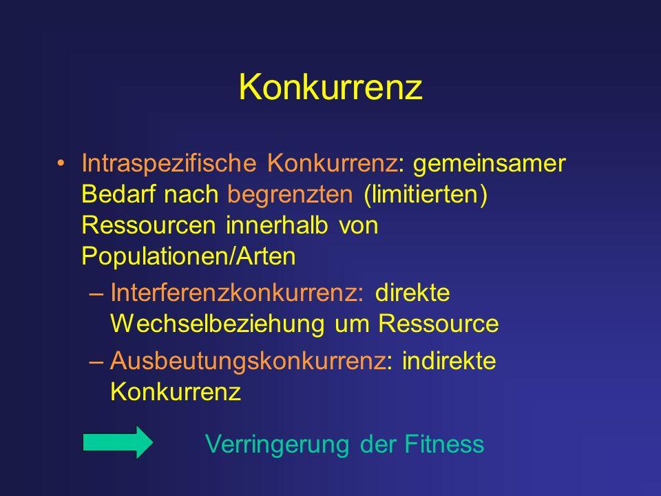 Konkurrenz Intraspezifische Konkurrenz: gemeinsamer Bedarf nach begrenzten (limitierten) Ressourcen innerhalb von Populationen/Arten –Interferenzkonku