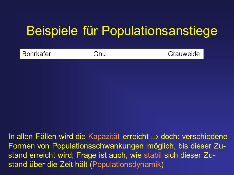 Beispiele für Populationsanstiege Bohrkäfer Gnu Grauweide In allen Fällen wird die Kapazität erreicht doch: verschiedene Formen von Populationsschwank