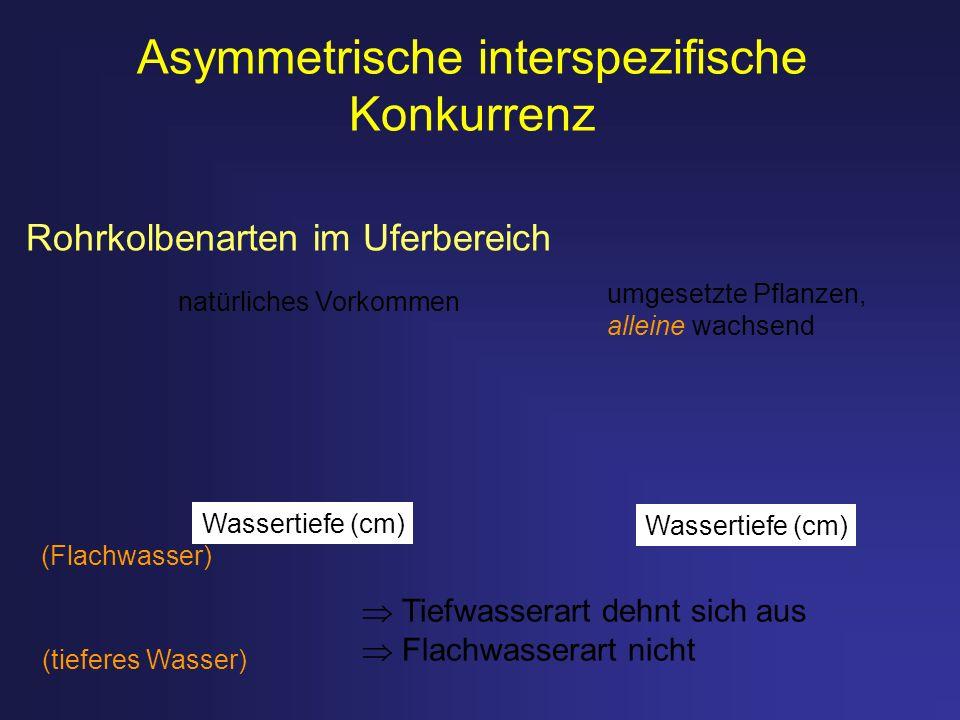 Asymmetrische interspezifische Konkurrenz (Flachwasser) (tieferes Wasser) natürliches Vorkommen umgesetzte Pflanzen, alleine wachsend Tiefwasserart de