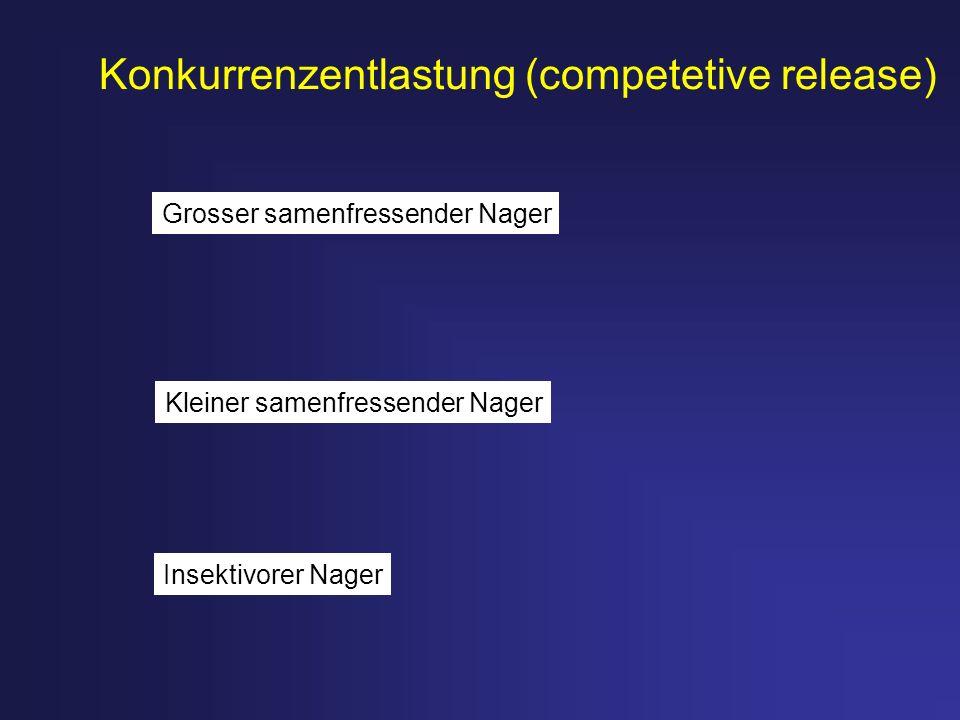 Konkurrenzentlastung (competetive release) Insektivorer Nager Kleiner samenfressender Nager Grosser samenfressender Nager