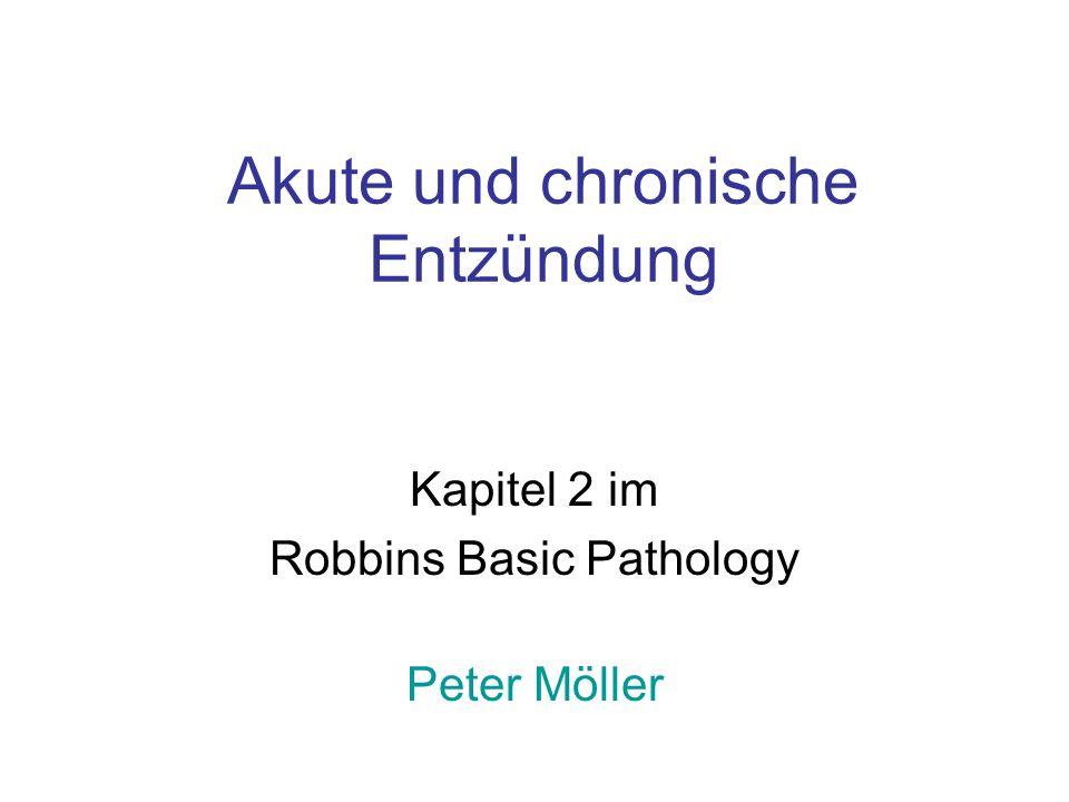 Akute und chronische Entzündung Kapitel 2 im Robbins Basic Pathology Peter Möller