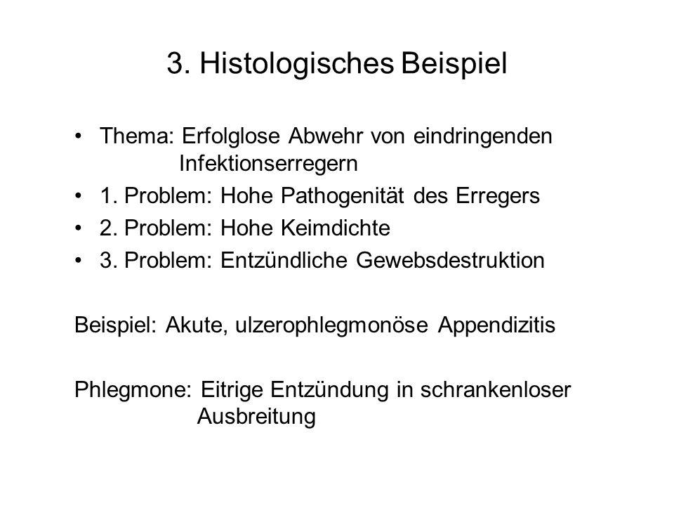 3. Histologisches Beispiel Thema: Erfolglose Abwehr von eindringenden Infektionserregern 1. Problem: Hohe Pathogenität des Erregers 2. Problem: Hohe K