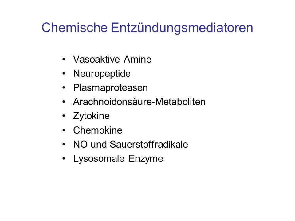Chemische Entzündungsmediatoren Vasoaktive Amine Neuropeptide Plasmaproteasen Arachnoidonsäure-Metaboliten Zytokine Chemokine NO und Sauerstoffradikal