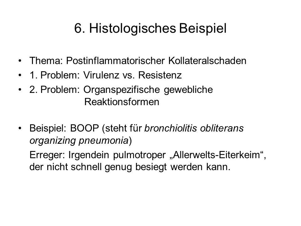 6. Histologisches Beispiel Thema: Postinflammatorischer Kollateralschaden 1. Problem: Virulenz vs. Resistenz 2. Problem: Organspezifische gewebliche R