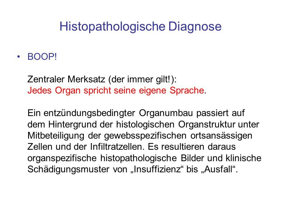 Histopathologische Diagnose BOOP! Zentraler Merksatz (der immer gilt!): Jedes Organ spricht seine eigene Sprache. Ein entzündungsbedingter Organumbau