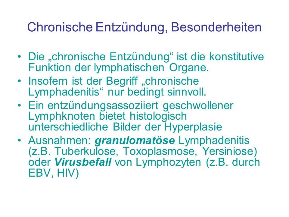 Chronische Entzündung, Besonderheiten Die chronische Entzündung ist die konstitutive Funktion der lymphatischen Organe. Insofern ist der Begriff chron