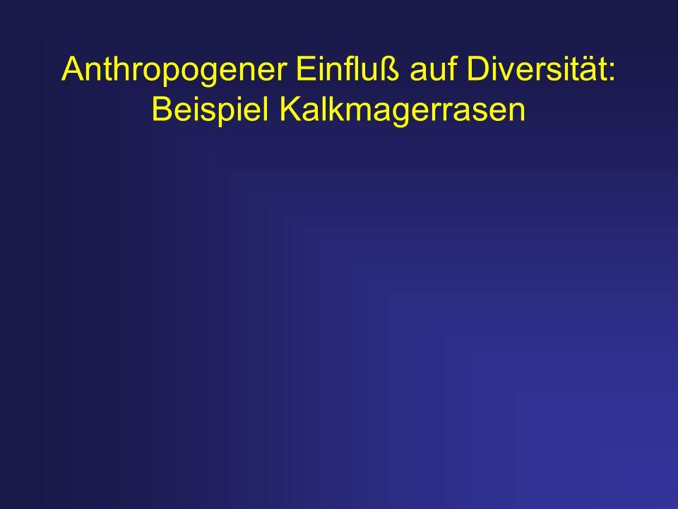 Anthropogener Einfluß auf Diversität: Beispiel Kalkmagerrasen