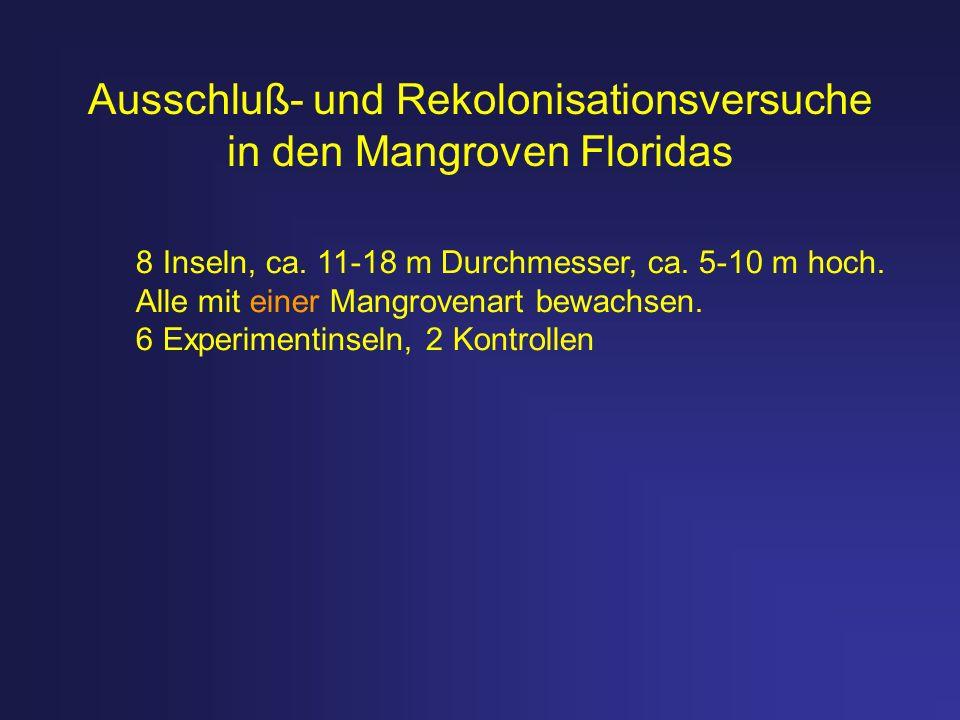 Ausschluß- und Rekolonisationsversuche in den Mangroven Floridas 8 Inseln, ca. 11-18 m Durchmesser, ca. 5-10 m hoch. Alle mit einer Mangrovenart bewac