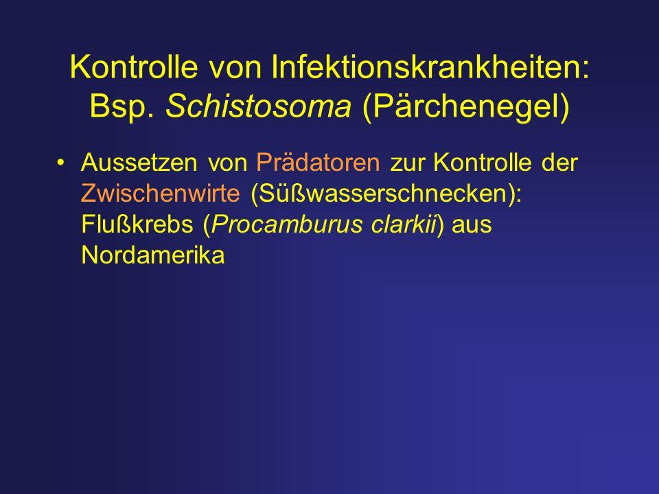 Kontrolle von Infektionskrankheiten: Bsp. Schistosoma (Pärchenegel) Aussetzen von Prädatoren zur Kontrolle der Zwischenwirte (Süßwasserschnecken): Flu