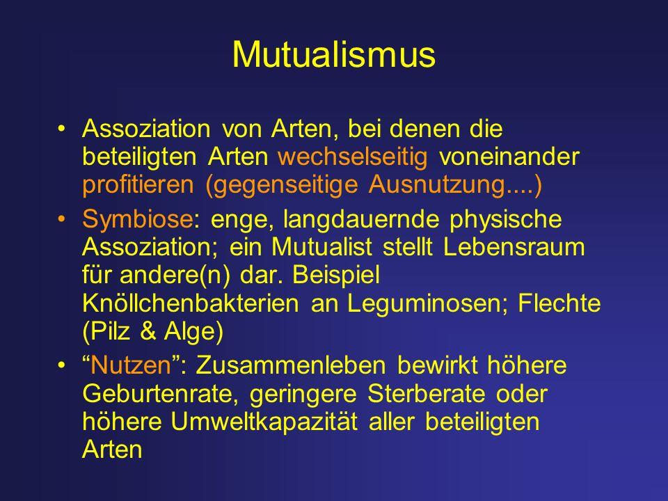 Mutualismus Assoziation von Arten, bei denen die beteiligten Arten wechselseitig voneinander profitieren (gegenseitige Ausnutzung....) Symbiose: enge,