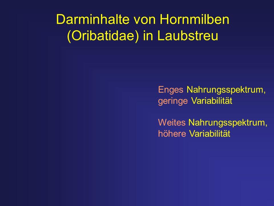 Darminhalte von Hornmilben (Oribatidae) in Laubstreu Enges Nahrungsspektrum, geringe Variabilität Weites Nahrungsspektrum, höhere Variabilität