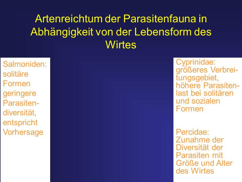Artenreichtum der Parasitenfauna in Abhängigkeit von der Lebensform des Wirtes Salmoniden: solitäre Formen geringere Parasiten- diversität, entspricht