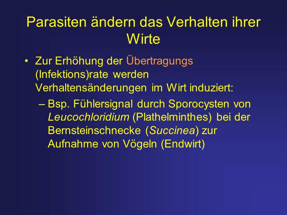 Weitere Beispiele für Mutualismus Samenverbreitung (vs.