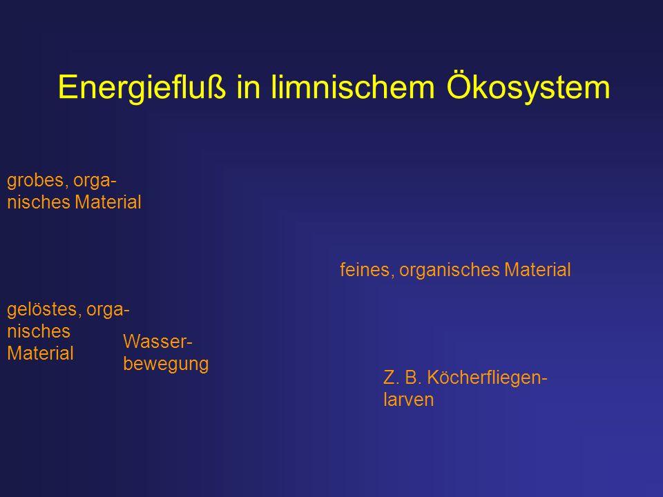 Energiefluß in limnischem Ökosystem grobes, orga- nisches Material gelöstes, orga- nisches Material feines, organisches Material Wasser- bewegung Z. B
