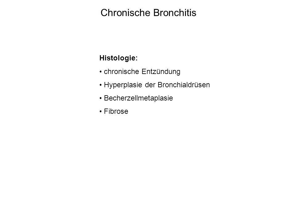 Chronische Bronchitis Histologie: chronische Entzündung Hyperplasie der Bronchialdrüsen Becherzellmetaplasie Fibrose