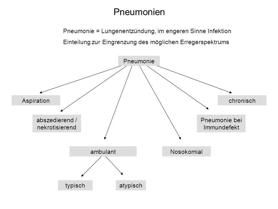 Pneumonien Nosokomialambulant typischatypisch abszedierend / nekrotisierend Pneumonie bei Immundefekt chronischAspiration Pneumonie Pneumonie = Lungen