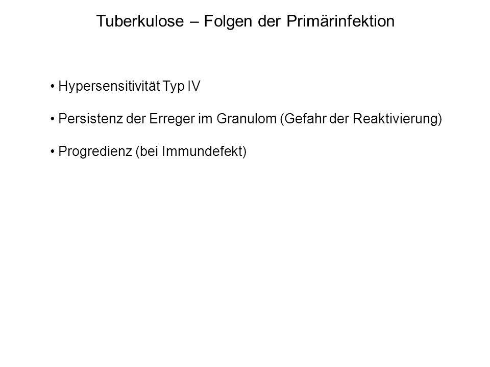 Tuberkulose – Folgen der Primärinfektion Hypersensitivität Typ IV Persistenz der Erreger im Granulom (Gefahr der Reaktivierung) Progredienz (bei Immun