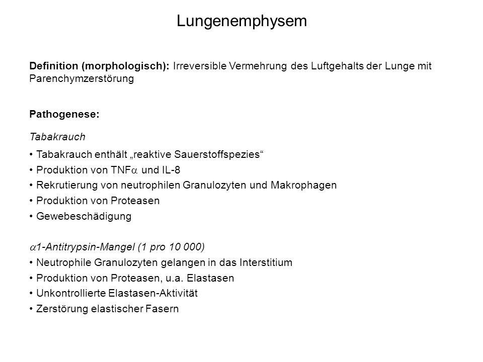 Lungenemphysem Definition (morphologisch): Irreversible Vermehrung des Luftgehalts der Lunge mit Parenchymzerstörung Pathogenese: Tabakrauch Tabakrauc