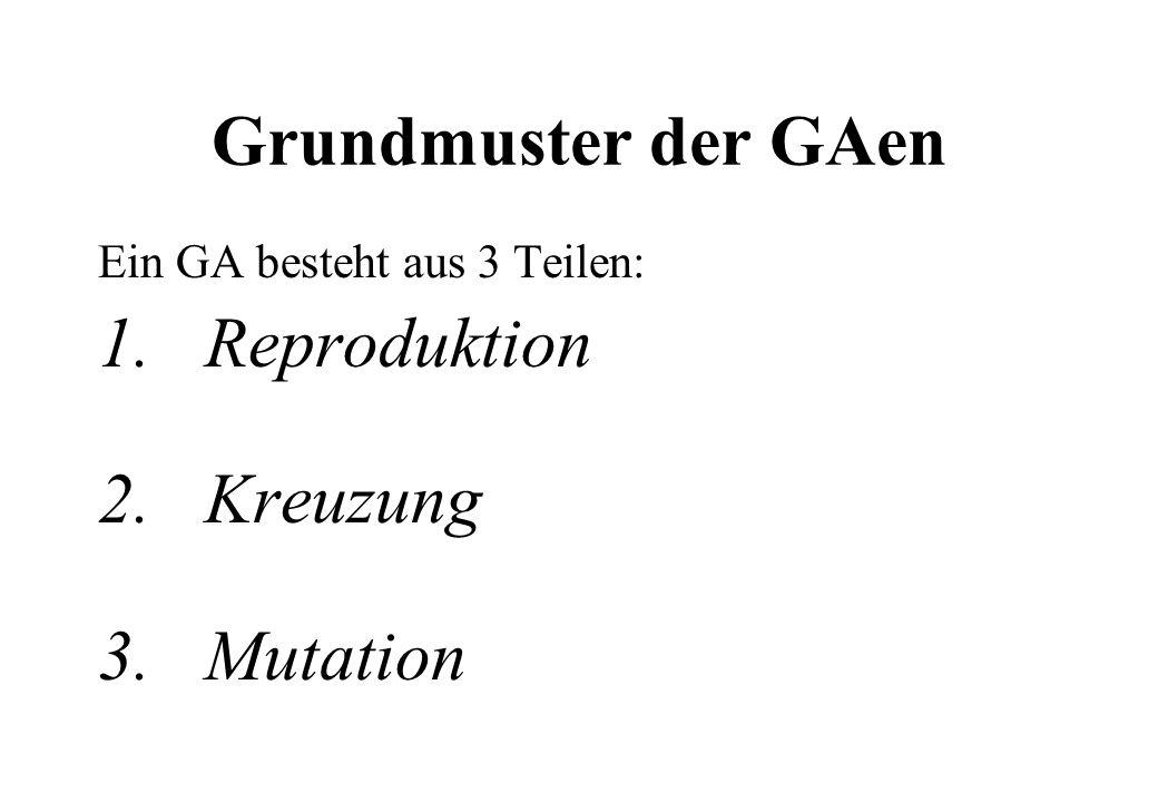 Grundmuster der GAen Ein GA besteht aus 3 Teilen: 1.Reproduktion 2. Kreuzung 3.Mutation