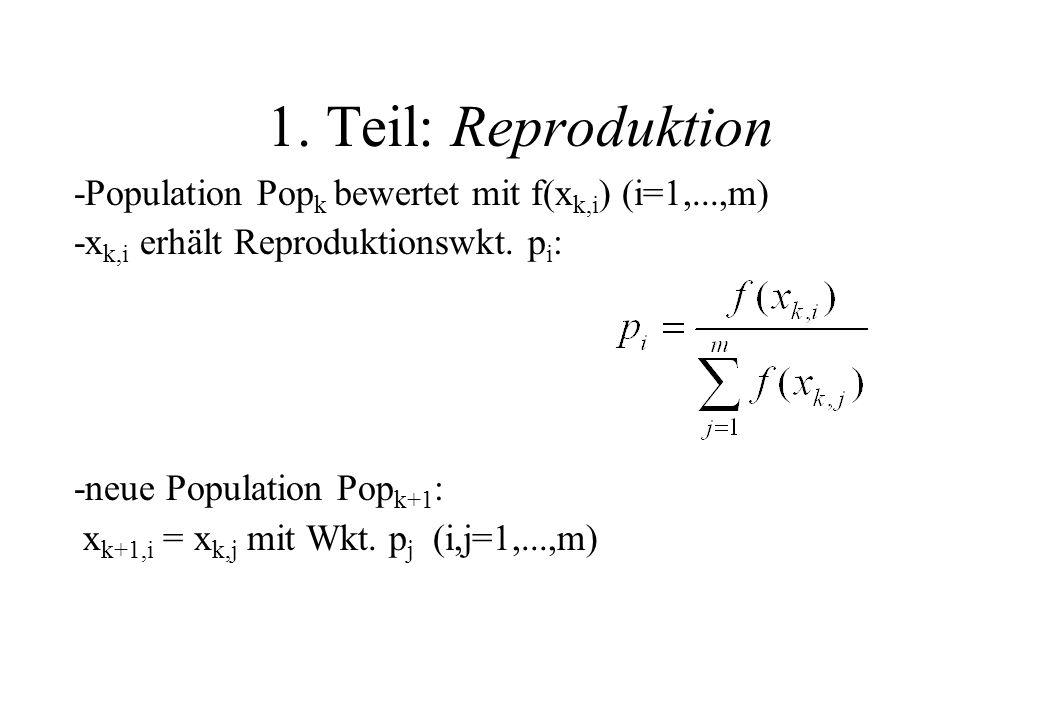 1. Teil: Reproduktion -Population Pop k bewertet mit f(x k,i ) (i=1,...,m) -x k,i erhält Reproduktionswkt. p i : -neue Population Pop k+1 : x k+1,i =