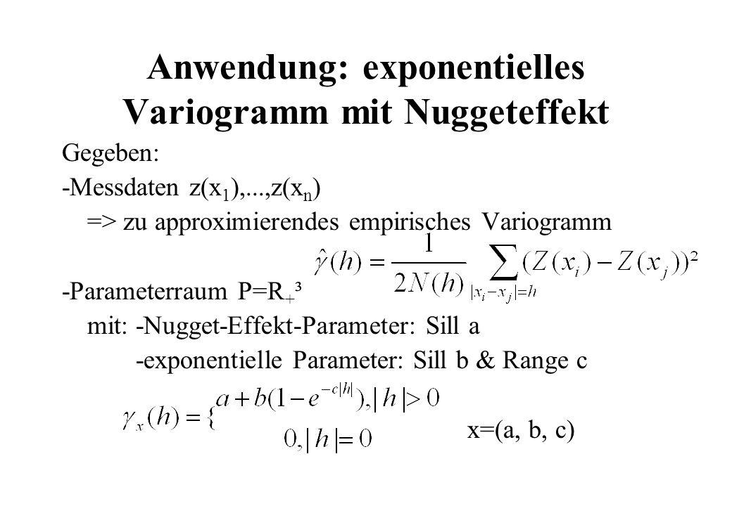 Anwendung: exponentielles Variogramm mit Nuggeteffekt Gegeben: -Messdaten z(x 1 ),...,z(x n ) => zu approximierendes empirisches Variogramm -Parameterraum P=R + ³ mit: -Nugget-Effekt-Parameter: Sill a -exponentielle Parameter: Sill b & Range c x=(a, b, c)