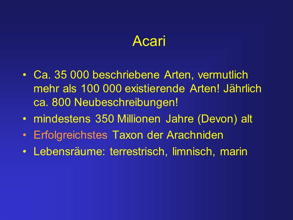 Acari Ca. 35 000 beschriebene Arten, vermutlich mehr als 100 000 existierende Arten! Jährlich ca. 800 Neubeschreibungen! mindestens 350 Millionen Jahr