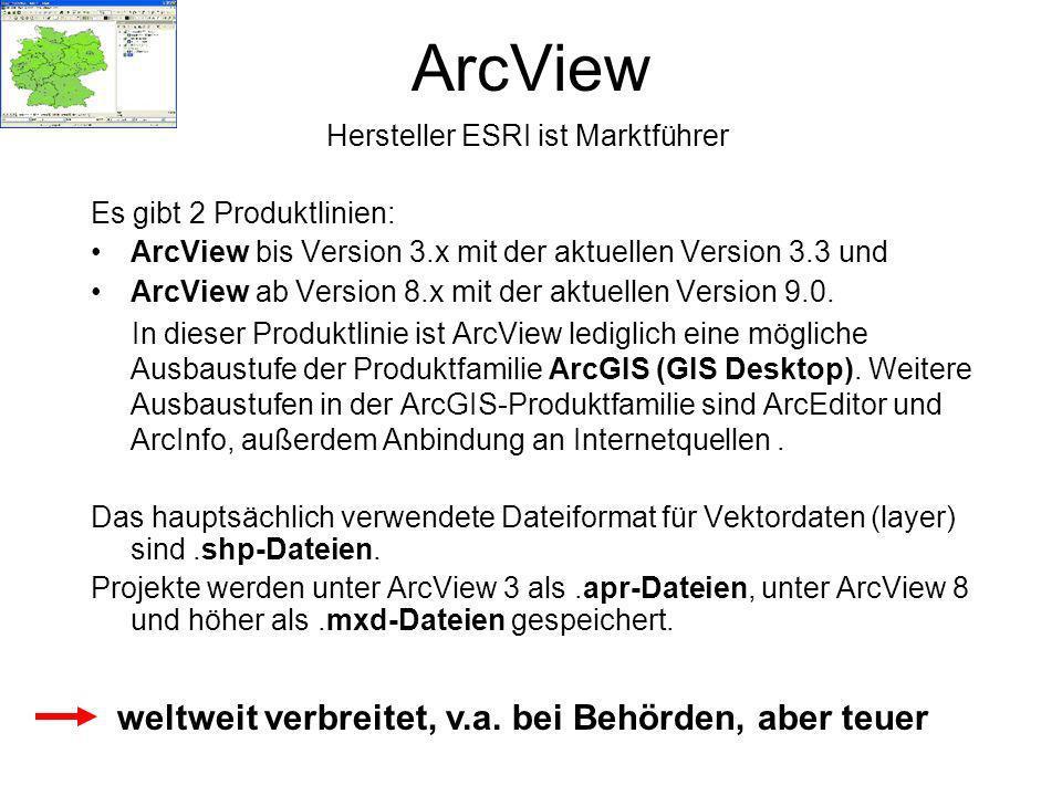 Hersteller ESRI ist Marktführer Es gibt 2 Produktlinien: ArcView bis Version 3.x mit der aktuellen Version 3.3 und ArcView ab Version 8.x mit der aktu