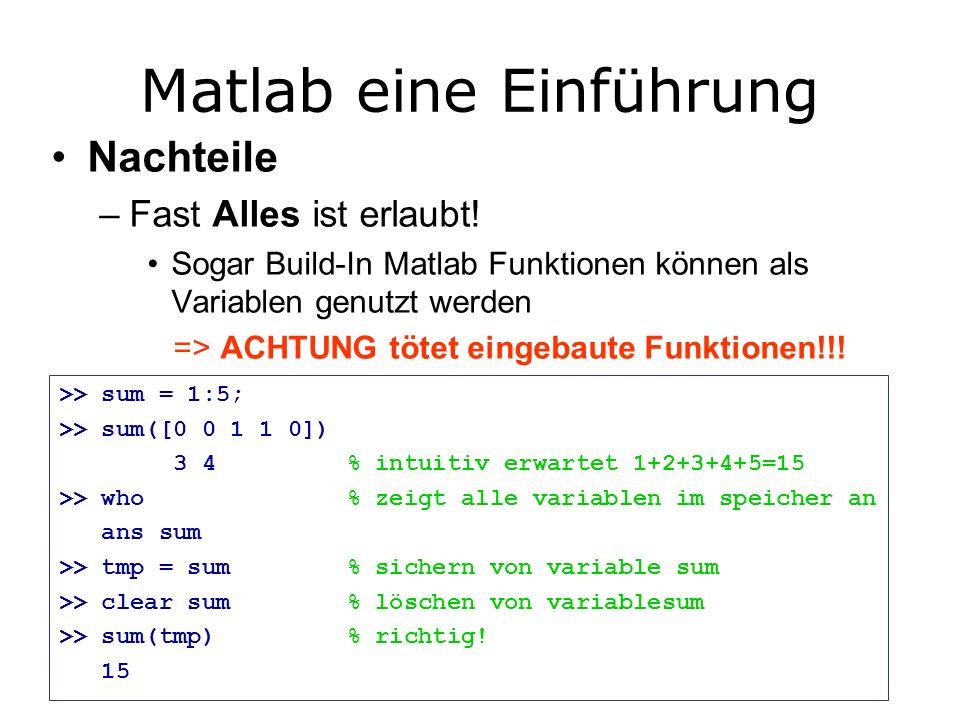 Matlab eine Einführung Nachteile –Fast Alles ist erlaubt.