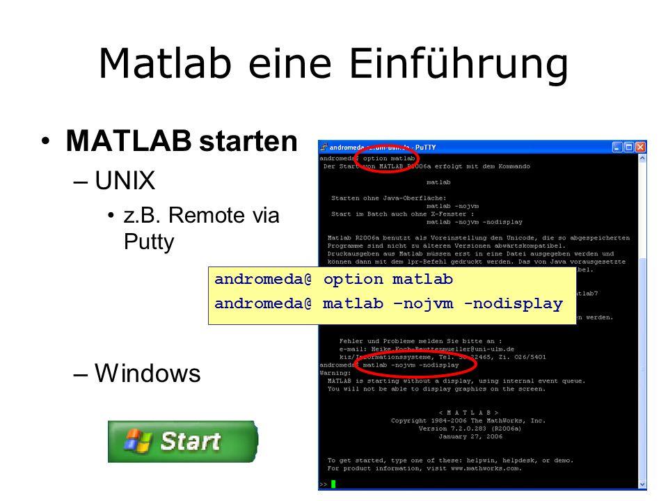Matlab eine Einführung MATLAB starten –UNIX z.B.