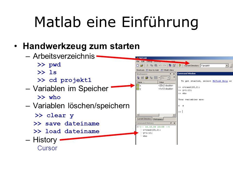 Matlab eine Einführung Handwerkzeug zum starten –Arbeitsverzeichnis >> pwd >> ls >> cd projekt1 –Variablen im Speicher >> who –Variablen löschen/speichern >> clear y >> save dateiname >> load dateiname –History Cursor