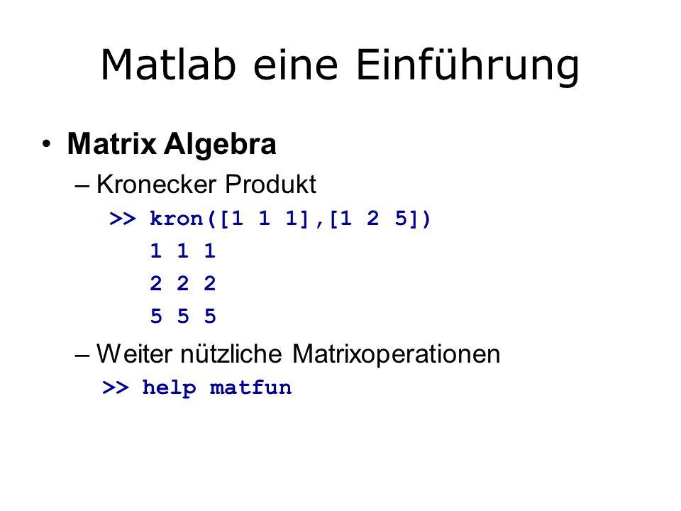 Matlab eine Einführung Matrix Algebra –Kronecker Produkt >> kron([1 1 1],[1 2 5]) 1 1 1 2 2 2 5 5 5 –Weiter nützliche Matrixoperationen >> help matfun
