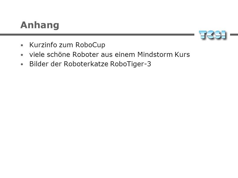 Anhang Kurzinfo zum RoboCup viele schöne Roboter aus einem Mindstorm Kurs Bilder der Roboterkatze RoboTiger-3