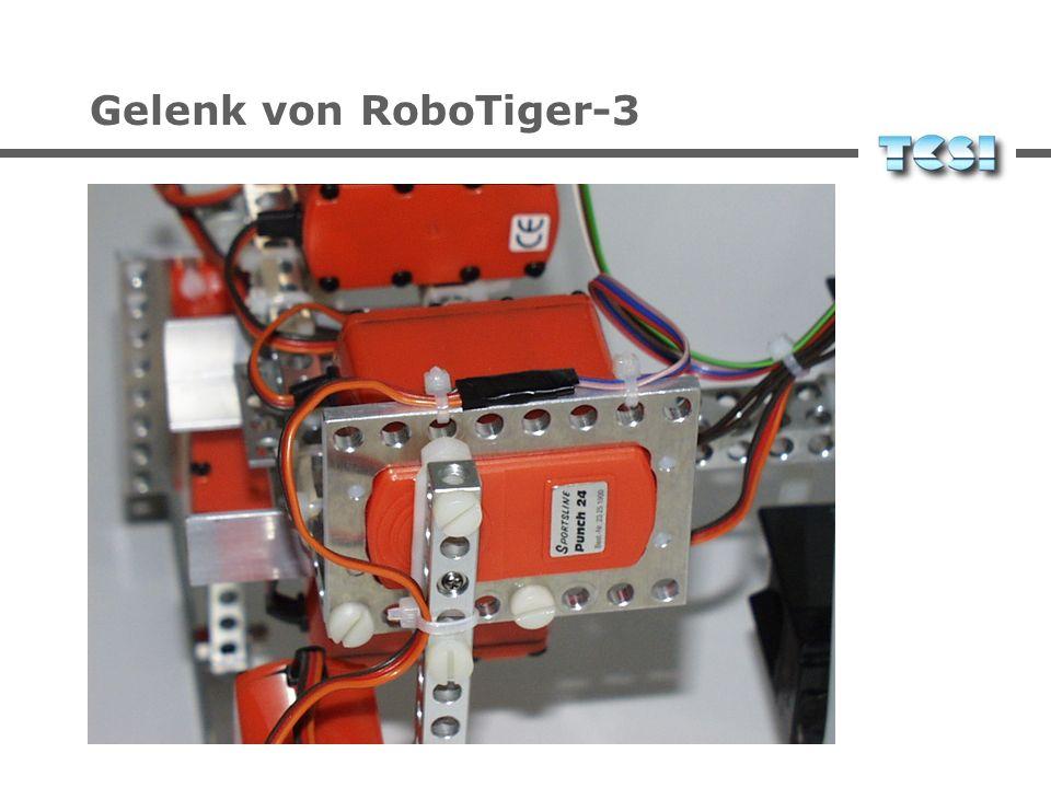 Gelenk von RoboTiger-3