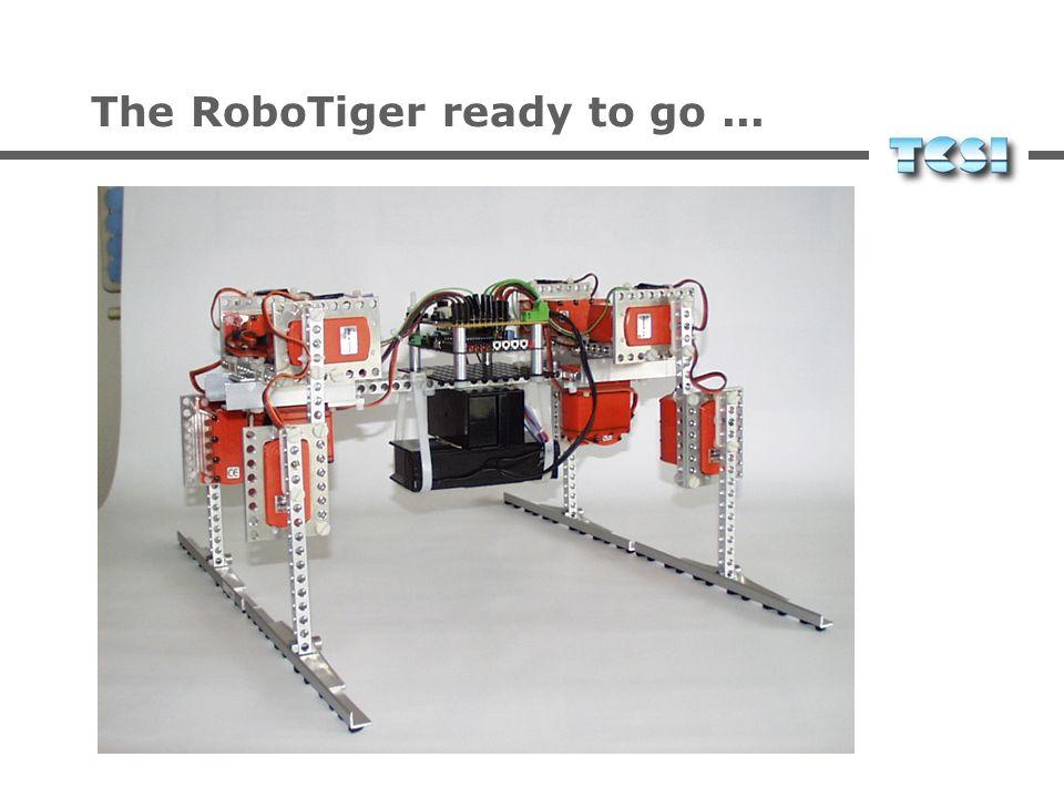 The RoboTiger ready to go...