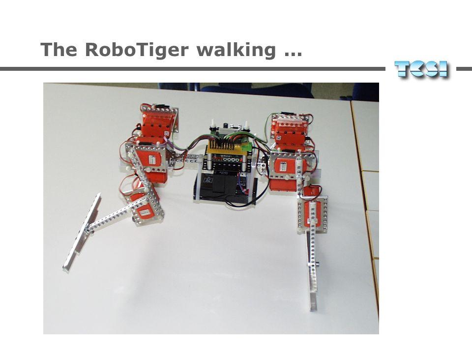 The RoboTiger walking...