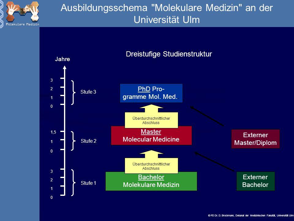 © PD Dr.D. Brockmann, Dekanat der Medizinischen Fakultät, Universität Ulm Grundlagen Zell- u.
