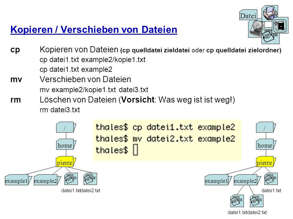 Kopieren / Verschieben von Dateien cpKopieren von Dateien (cp quelldatei zieldatei oder cp quelldatei zielordner) cp datei1.txt example2/kopie1.txt cp