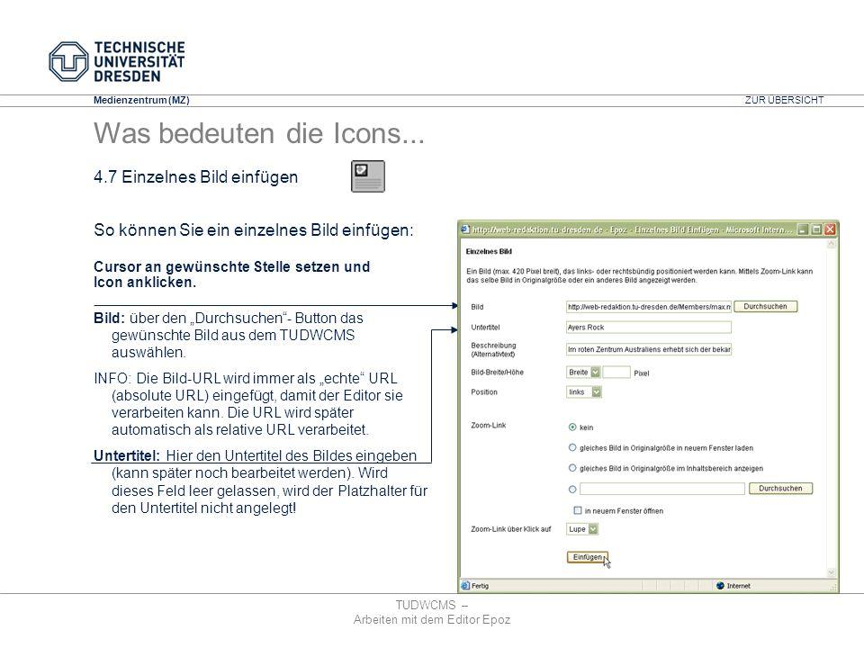 Medienzentrum (MZ) TUDWCMS – Arbeiten mit dem Editor Epoz Bild: über den Durchsuchen- Button das gewünschte Bild aus dem TUDWCMS auswählen. INFO: Die