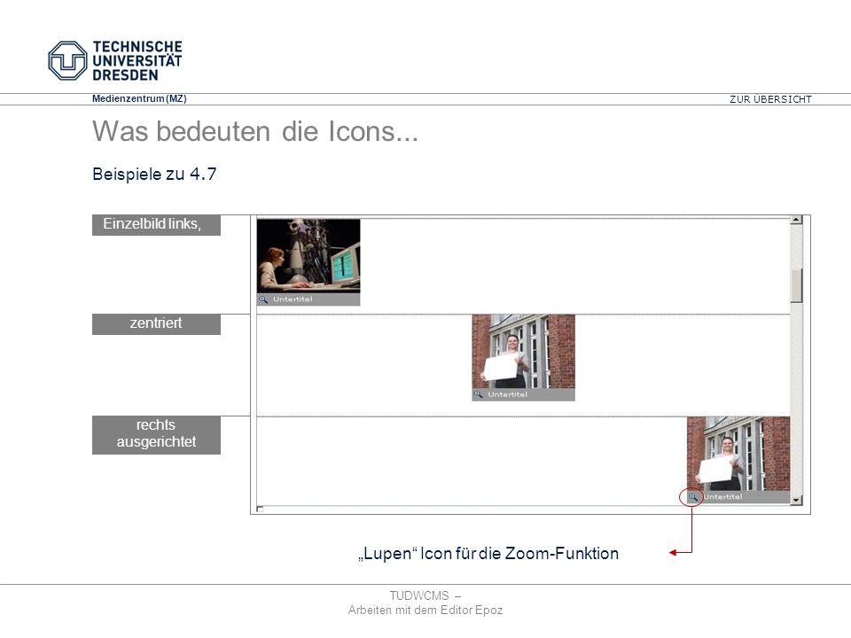 Medienzentrum (MZ) TUDWCMS – Arbeiten mit dem Editor Epoz Einzelbild links, zentriert rechts ausgerichtet Lupen Icon für die Zoom-Funktion ZUR ÜBERSIC