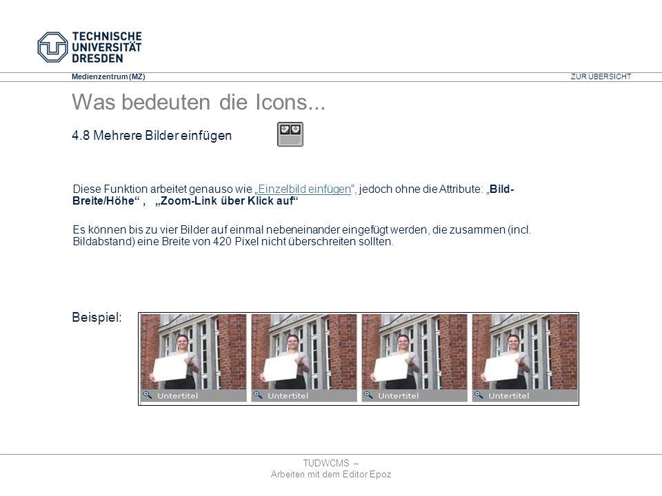 Medienzentrum (MZ) TUDWCMS – Arbeiten mit dem Editor Epoz Diese Funktion arbeitet genauso wie Einzelbild einfügen, jedoch ohne die Attribute: Bild- Br