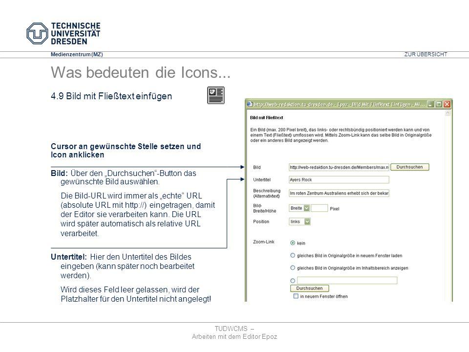 Medienzentrum (MZ) TUDWCMS – Arbeiten mit dem Editor Epoz Cursor an gewünschte Stelle setzen und Icon anklicken Bild: Über den Durchsuchen-Button das
