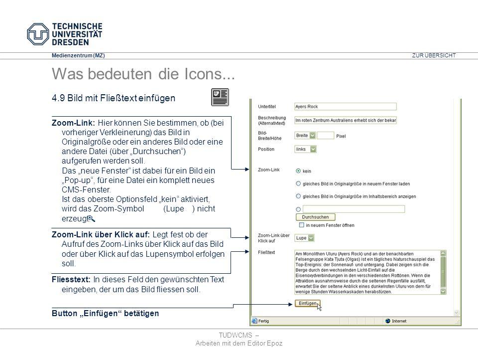 Medienzentrum (MZ) TUDWCMS – Arbeiten mit dem Editor Epoz Zoom-Link: Hier können Sie bestimmen, ob (bei vorheriger Verkleinerung) das Bild in Original