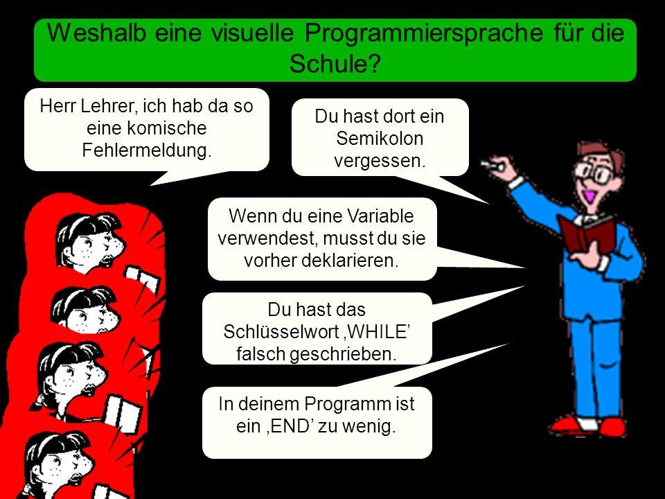 13 Weshalb eine visuelle Programmiersprache für die Schule? Herr Lehrer, ich hab da so eine komische Fehlermeldung. Du hast das Schlüsselwort WHILE fa