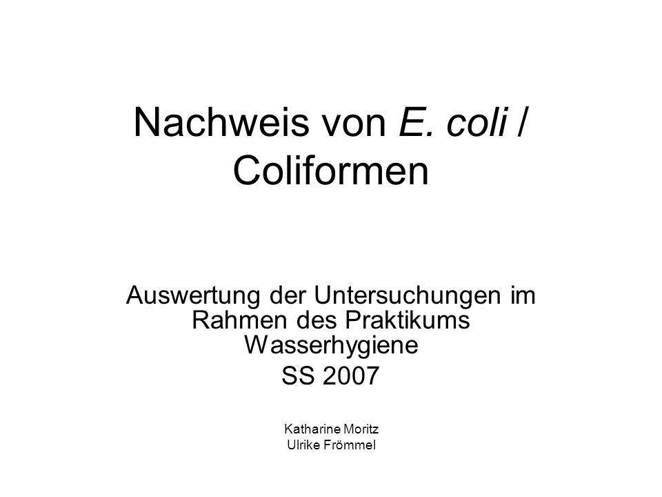 Nachweis von E. coli / Coliformen Auswertung der Untersuchungen im Rahmen des Praktikums Wasserhygiene SS 2007 Katharine Moritz Ulrike Frömmel