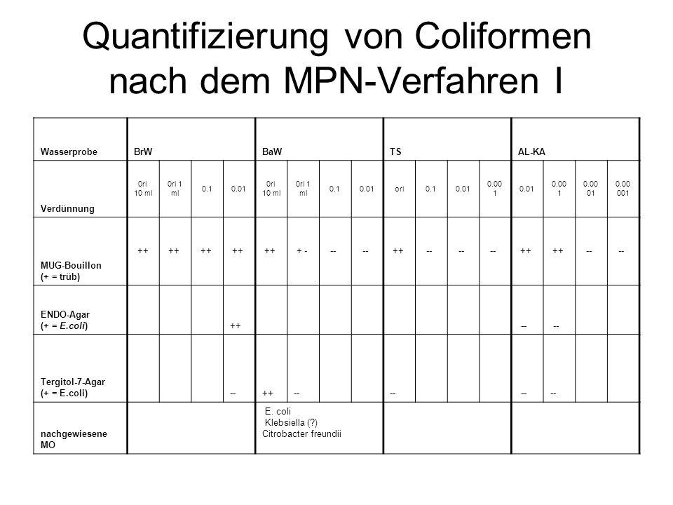 Quantifizierung von Coliformen nach dem MPN-Verfahren I WasserprobeBrWBaWTSAL-KA Verdünnung 0ri 10 ml 0ri 1 ml 0.10.01 0ri 10 ml 0ri 1 ml 0.10.01ori0.
